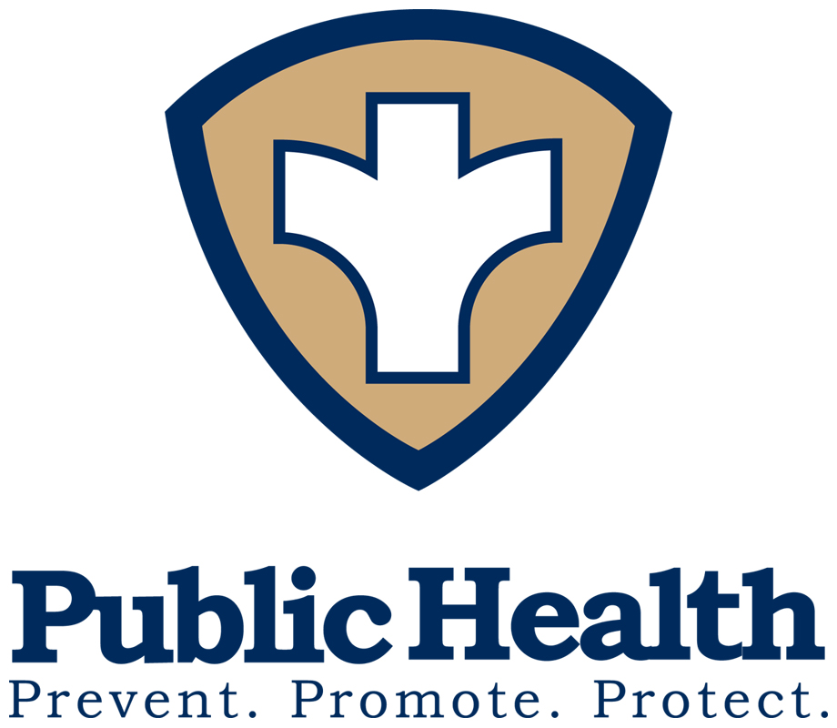public health essay resources  public health essay
